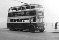 BDY 779 Hastings Tramways 4