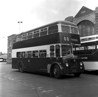 TBC 164 Leicester City Transport 164