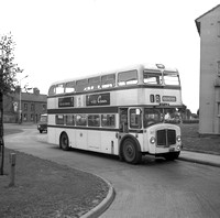 217 AJF Leicester City Transport.