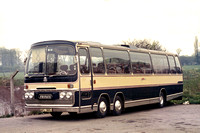 AFL 385J Whippet Coaches